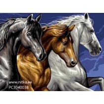 """Maalimine numbrite järgi """"Hobused"""", 30x40"""