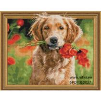Teemanmosaiik-koer, 40x50