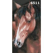 "Kanvaa pildiga ""Hobune"", 25x50 cm"